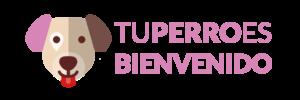 Tuperroesbienvenido_Versiones-01